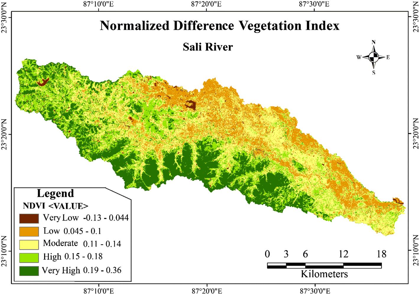 Assessment of vegetation status of Sali River basin, a