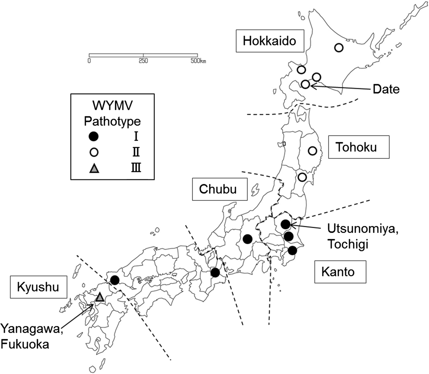 Response of Japanese wheat varieties to three pathotypes of wheat