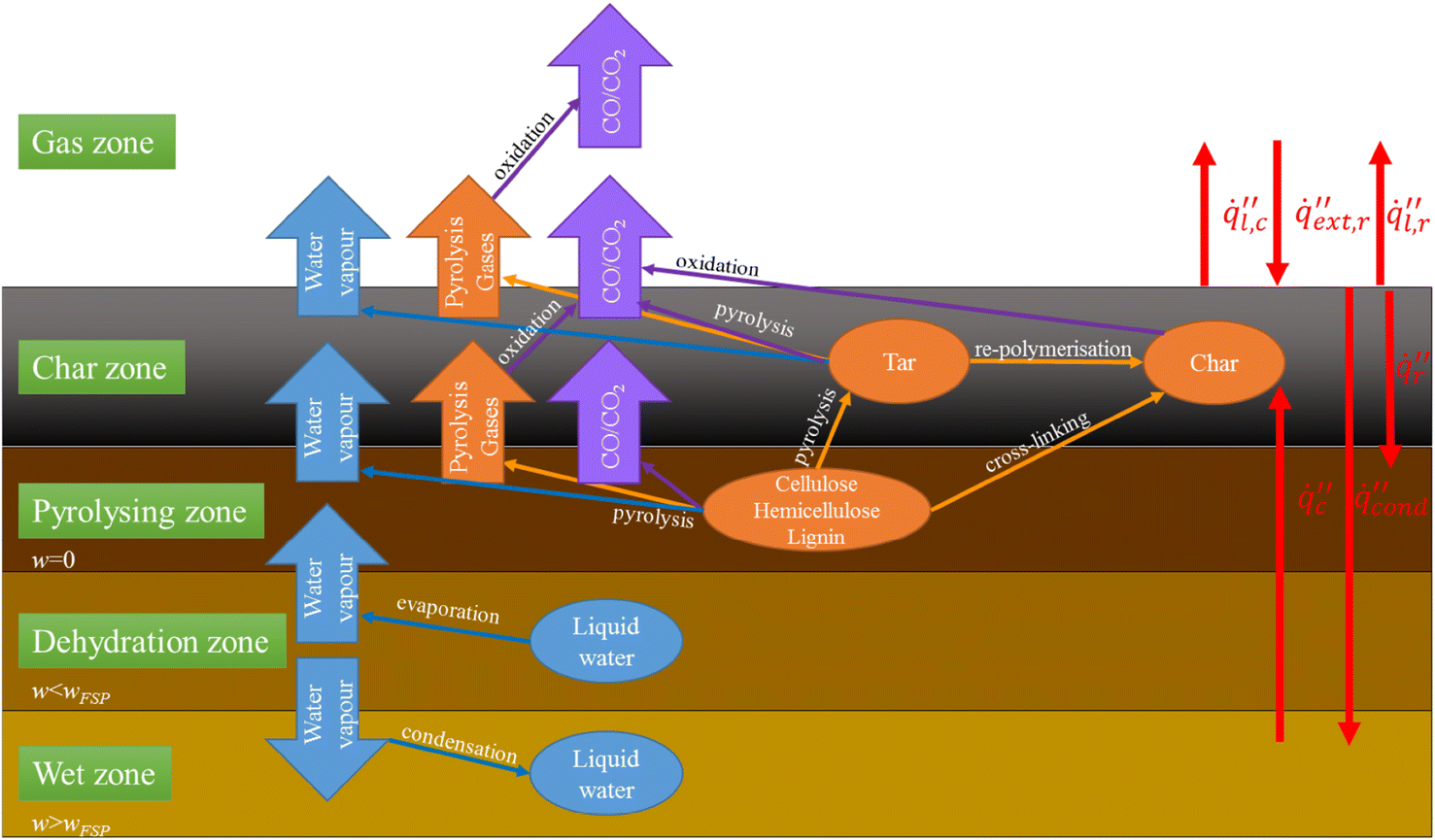 A Review of Factors Affecting the Burning Behaviour of Wood