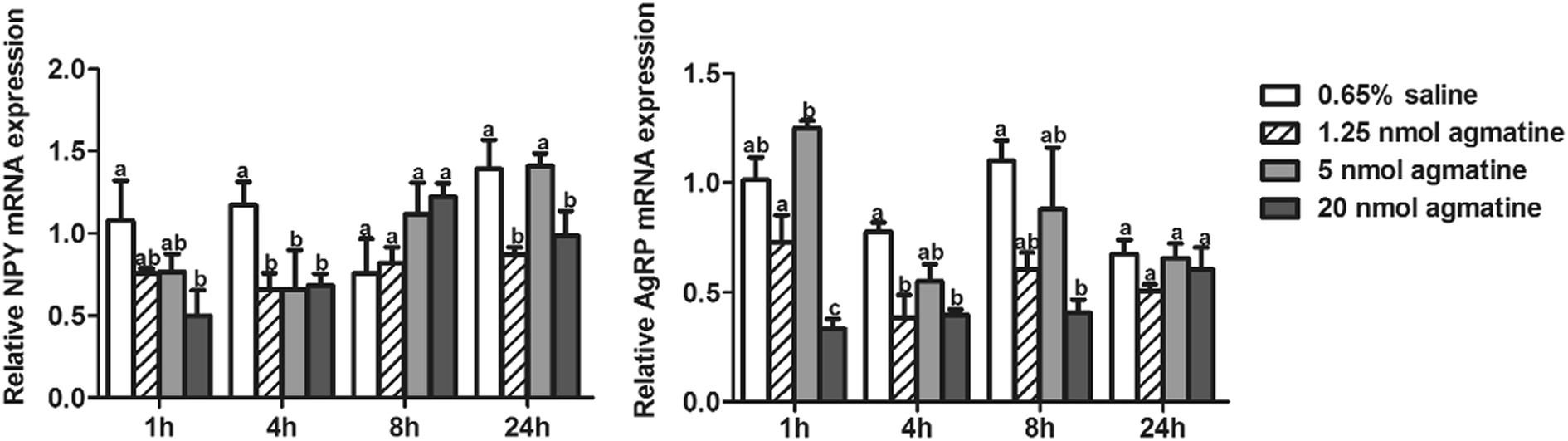 Effect of agmatine on food intake in mandarin fish ( Siniperca