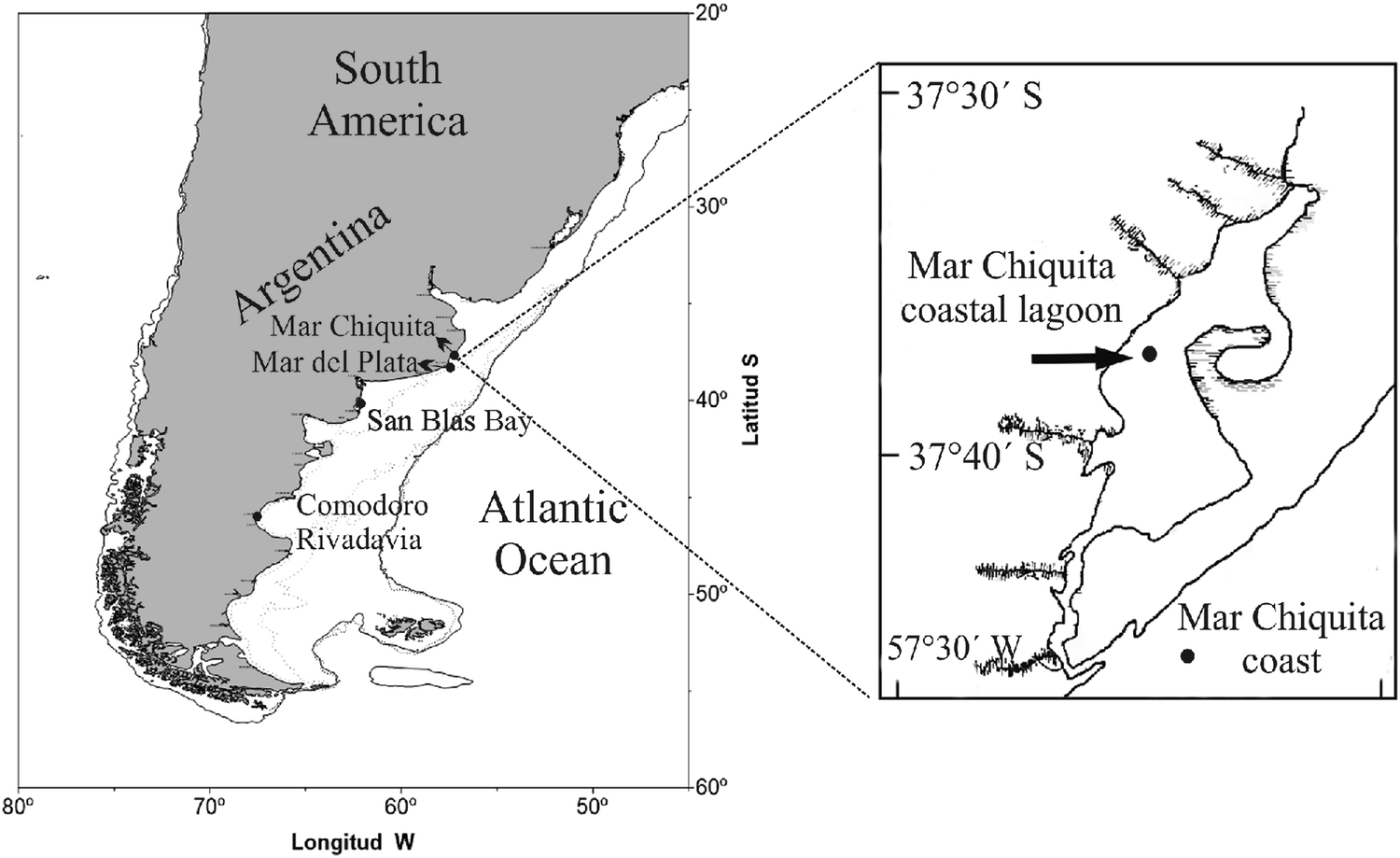 Inferring boundaries among fish species of the new world silversides