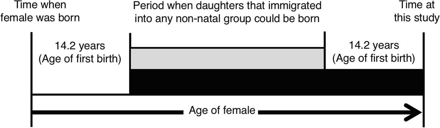 Genetic Analysis of Migration Pattern of Female Bonobos