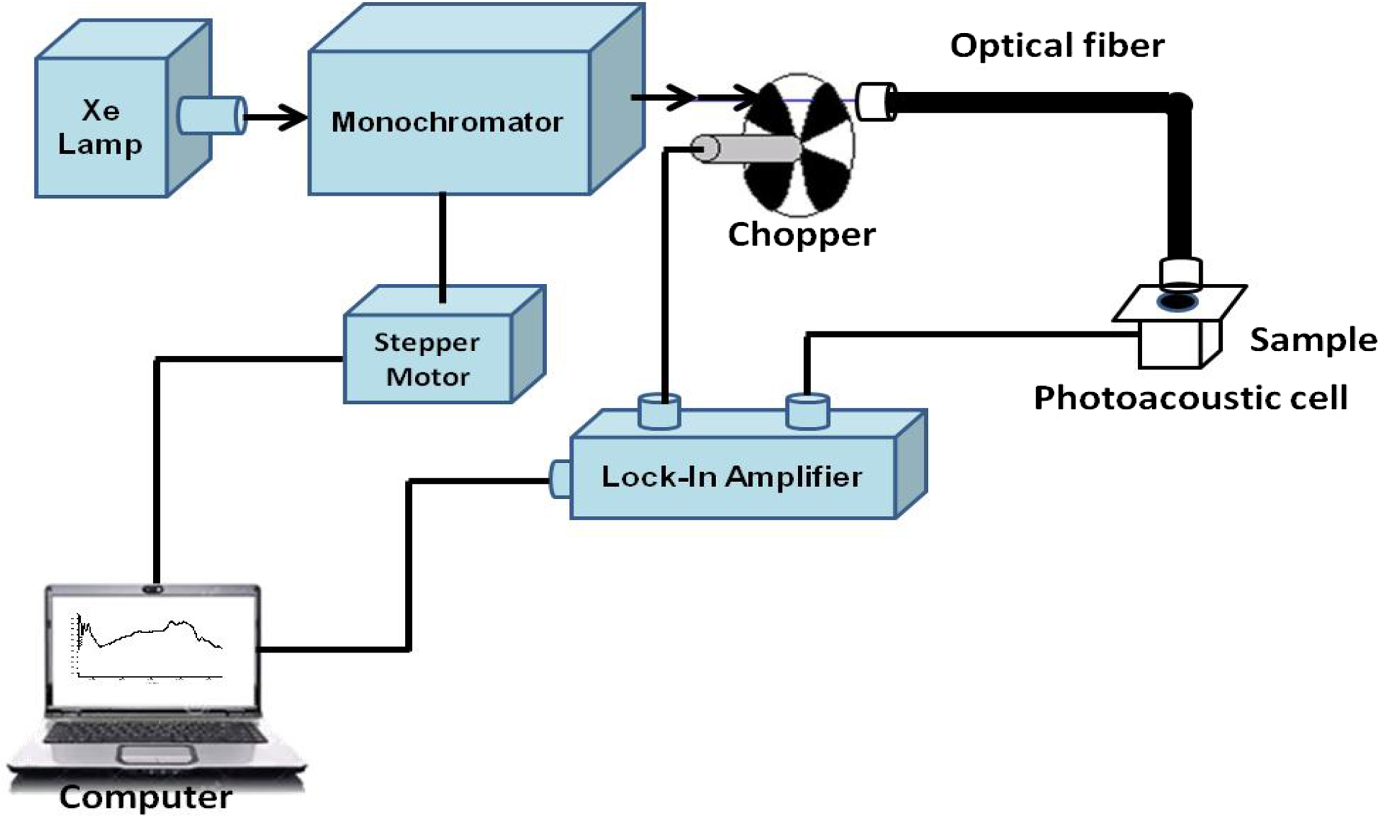 Characterization Of Aged Lettuce And Chard Seeds By Photothermal The Lockin Amplifier Spectroscopy Techniques Open Image In New Window
