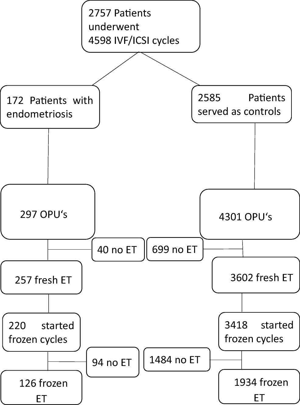 Endometriosis and cumulative live birth rate after fresh and