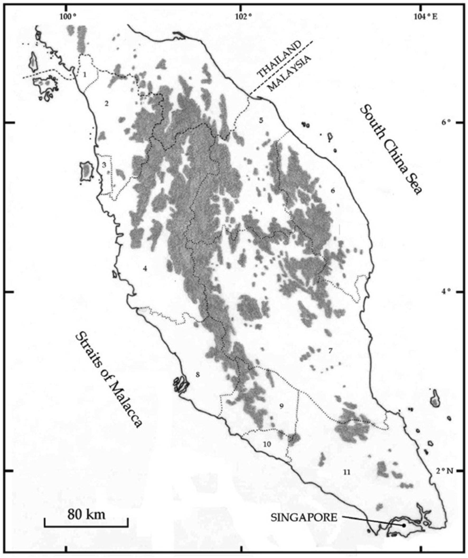 Comparative study of spatial patterns and ecological niches