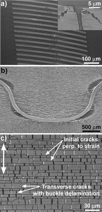 Flexible electronics under strain: a review of mechanical