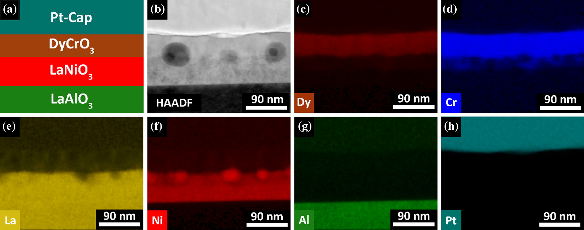 Magnetic and tunable dielectric properties of DyCrO3 thin