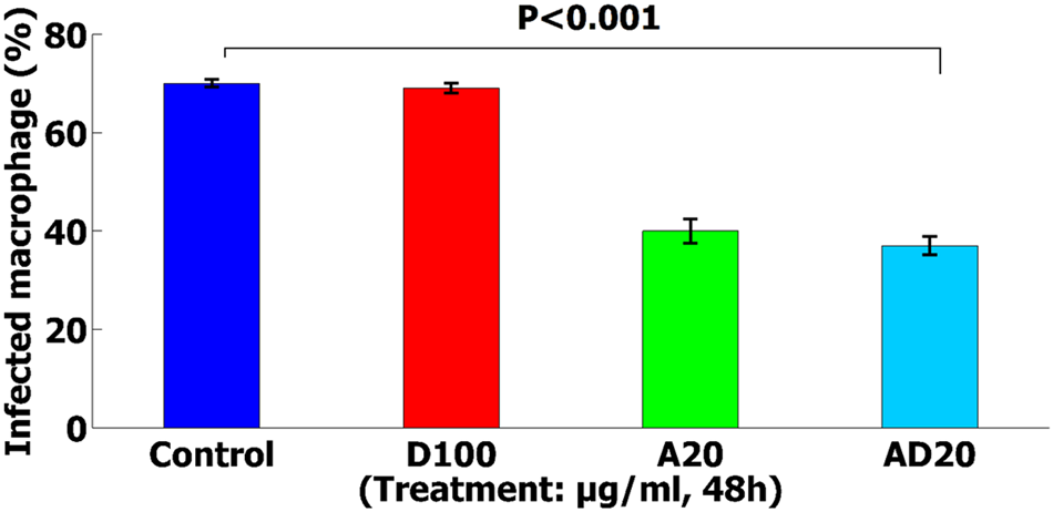 Reduction toxicity of Amphotericin B through loading into a