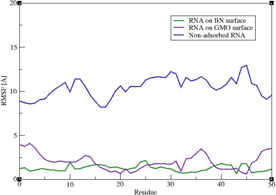 Molecular Dynamics Investigation of the Interactions Between RNA