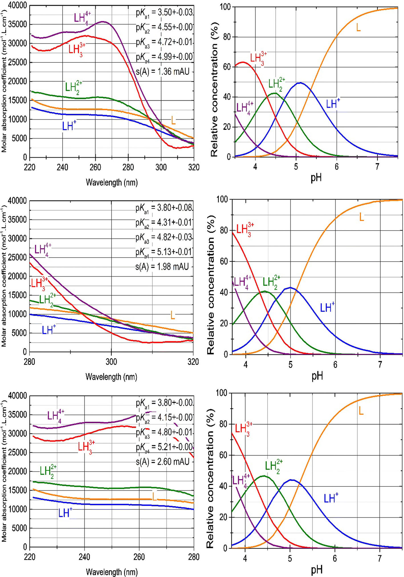 A Search for the Protonation Model with Thermodynamic