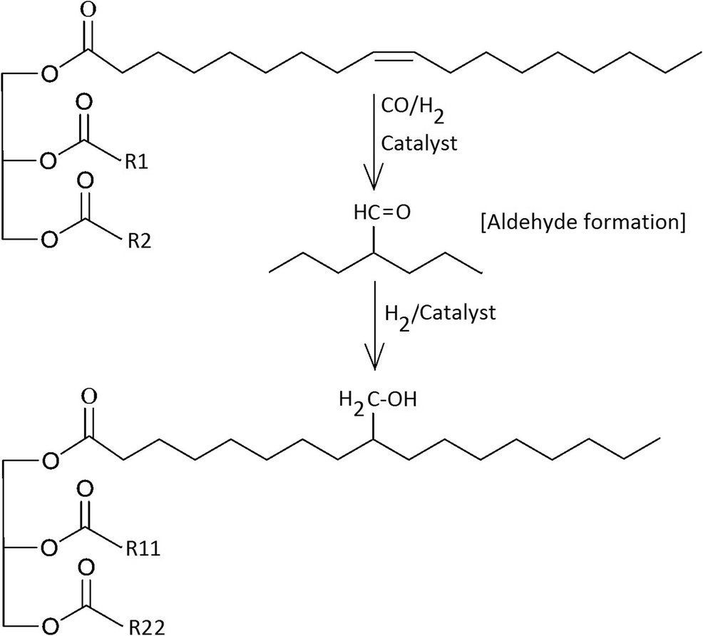 Polyurethanes from vegetable oils and applications: a review