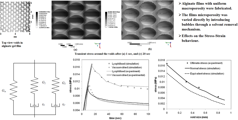 Mechanical behaviour of a hydrogel film with embedded voids under