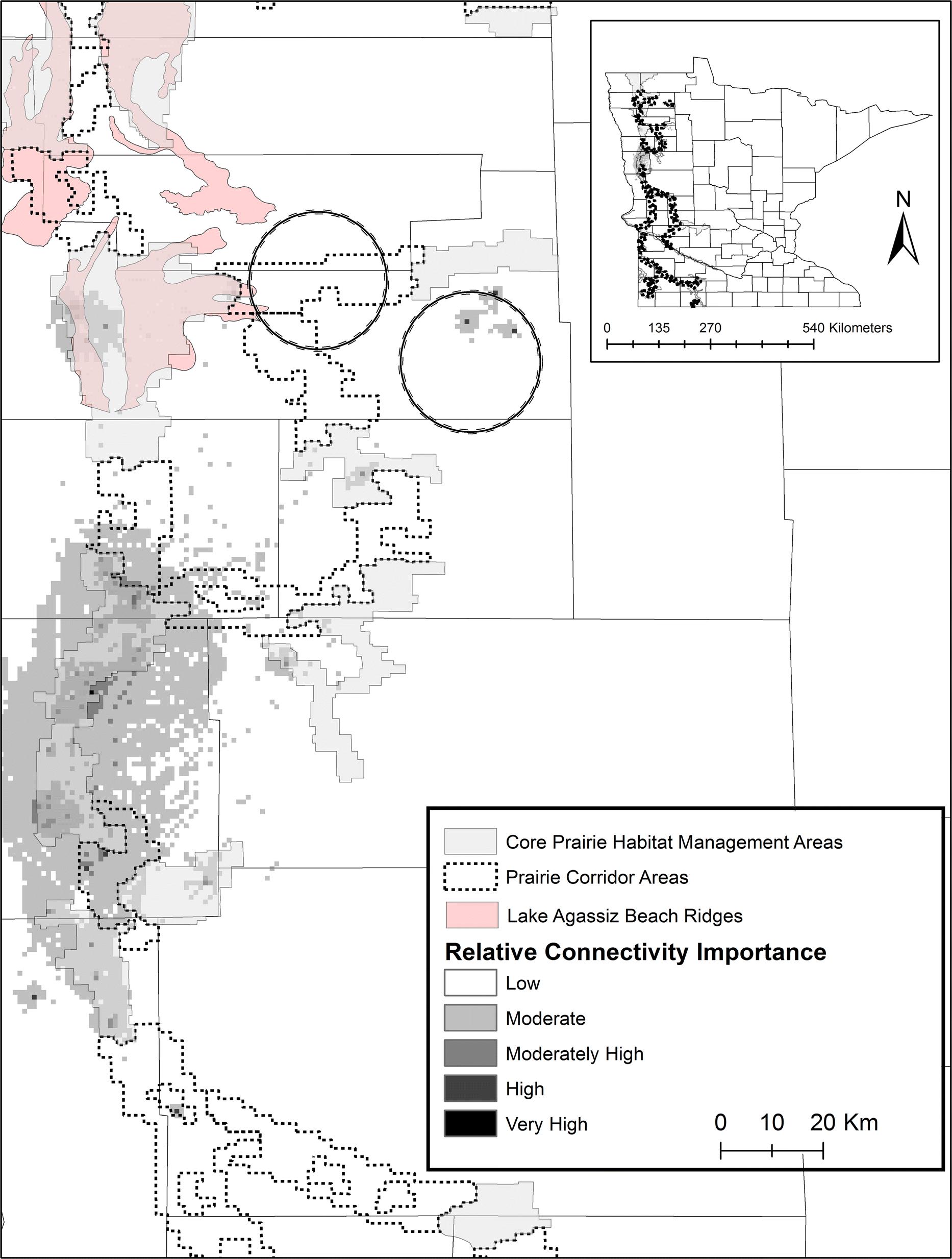 Landscape genetic evaluation of a tallgrass prairie corridor