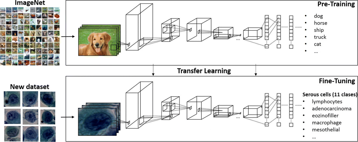 Transfer learning with pre-trained deep convolutional neural