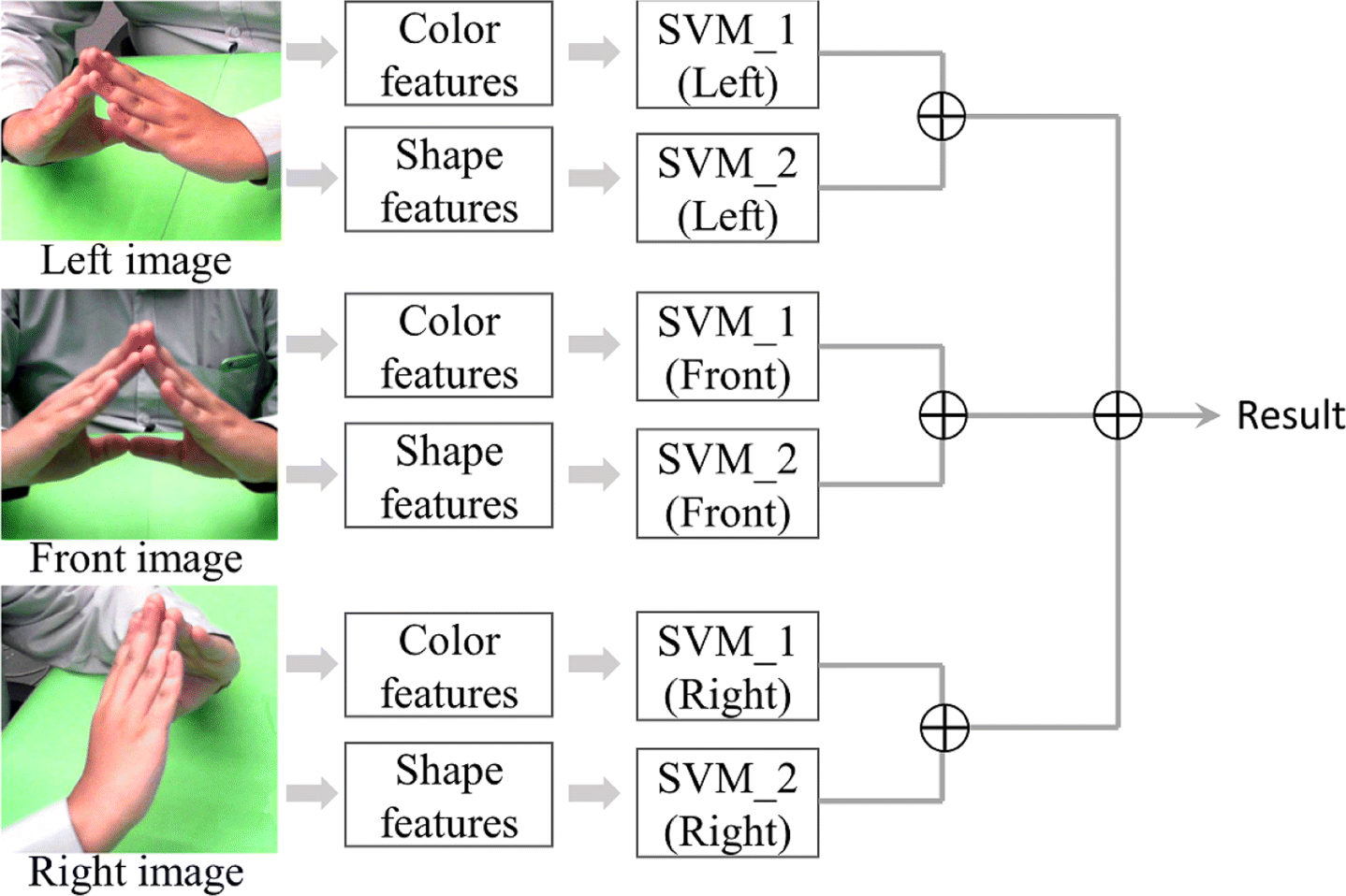 Occlusion-robust bimanual gesture recognition by fusing