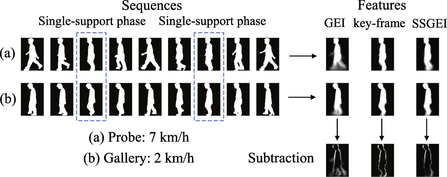 Speed-Invariant Gait Recognition Using Single-Support Gait Energy