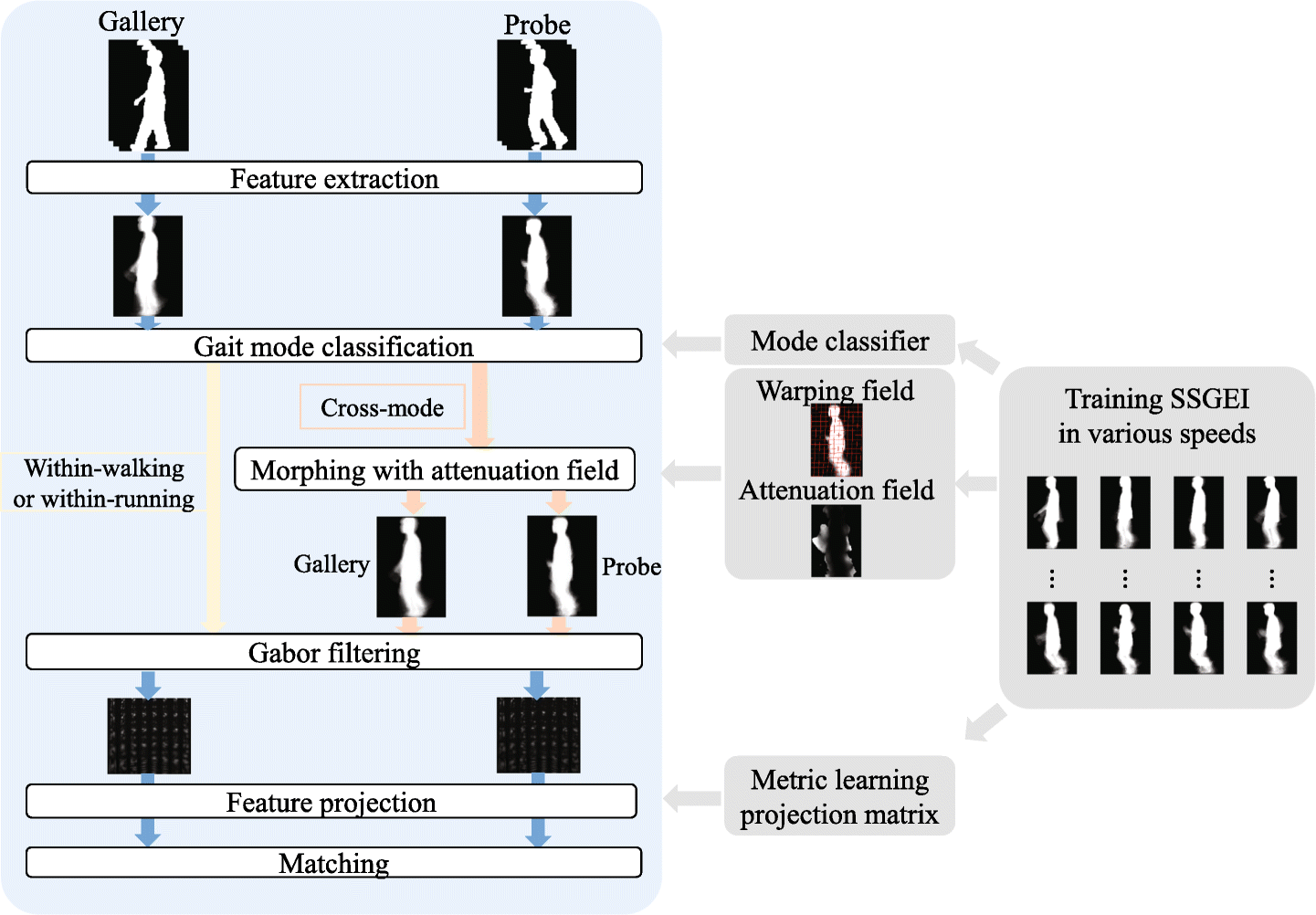 Speed-Invariant Gait Recognition Using Single-Support Gait
