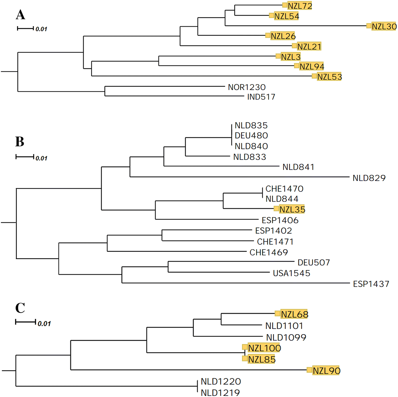 Contemporary Gene Flow is a Major Force Shaping the
