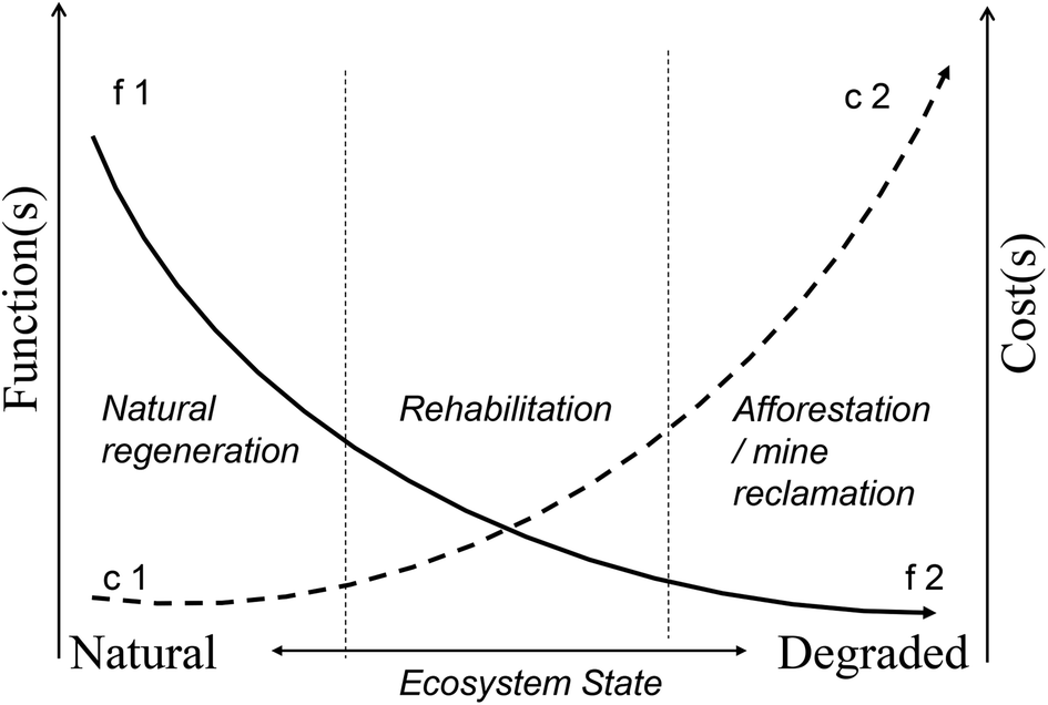 Restoring forests: regeneration and ecosystem function for