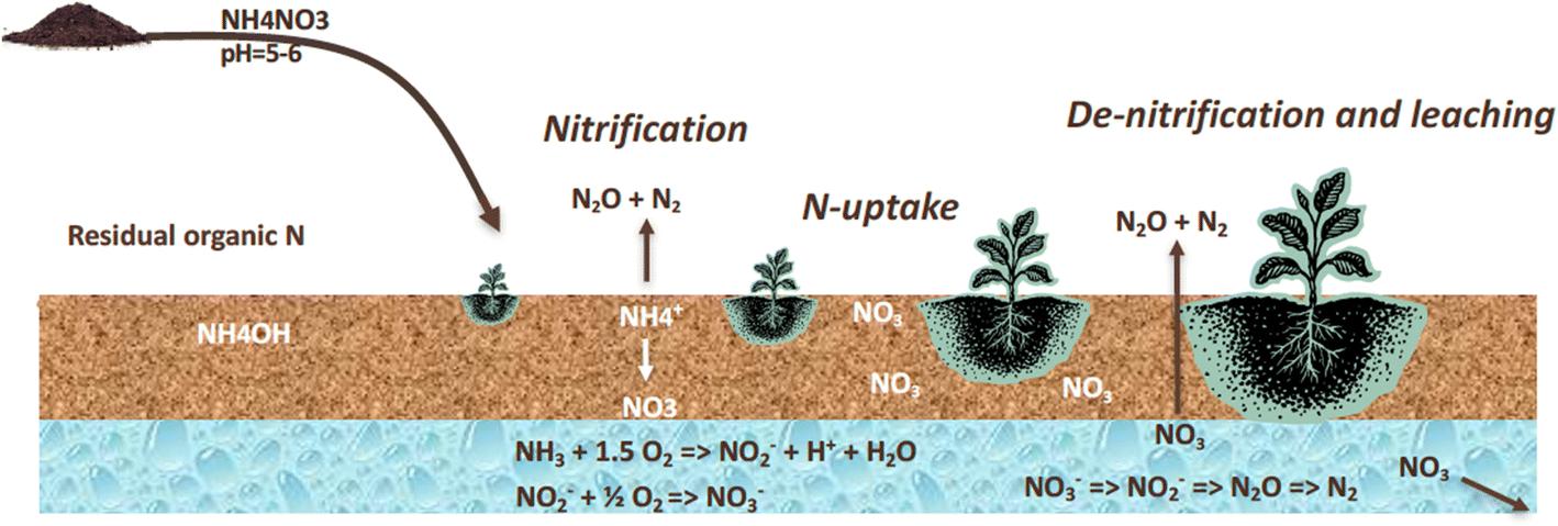 Plasma Activated Organic Fertilizer | SpringerLink