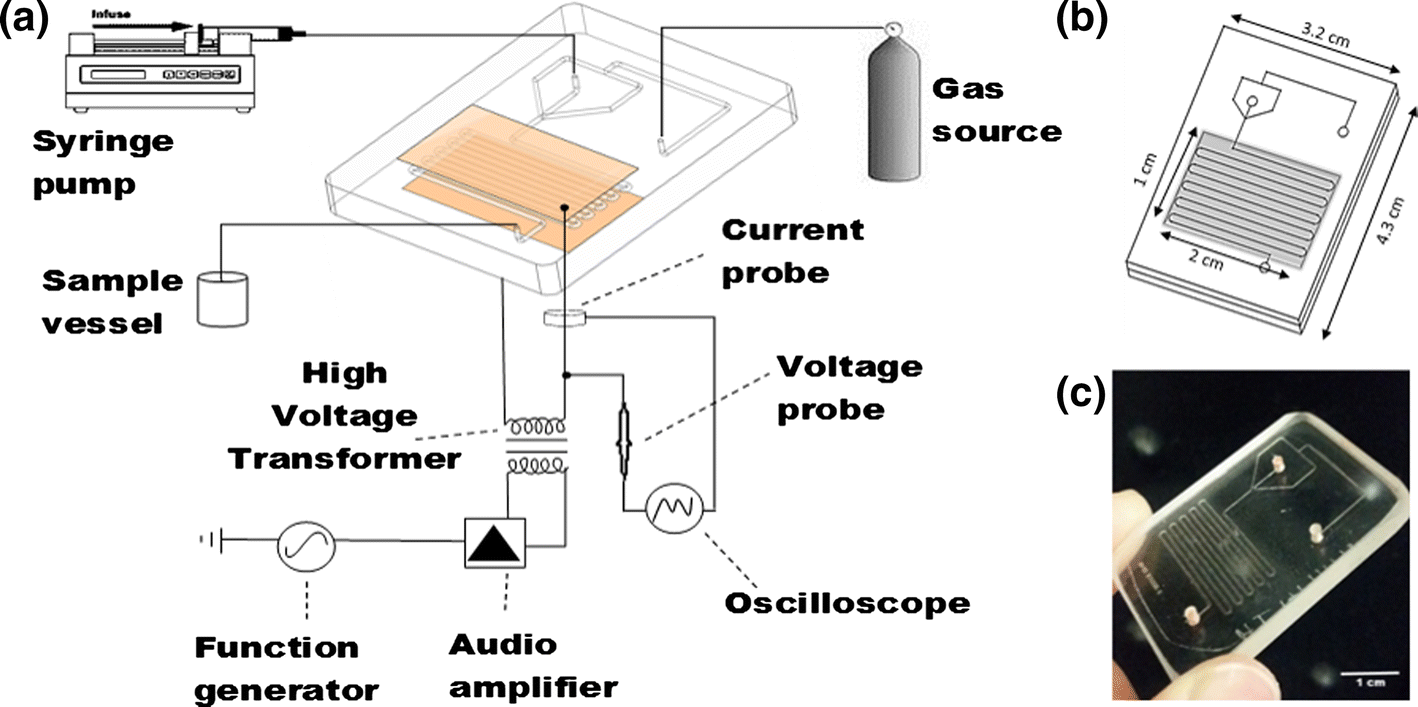 A Microfluidic Atmospheric-Pressure Plasma Reactor for Water