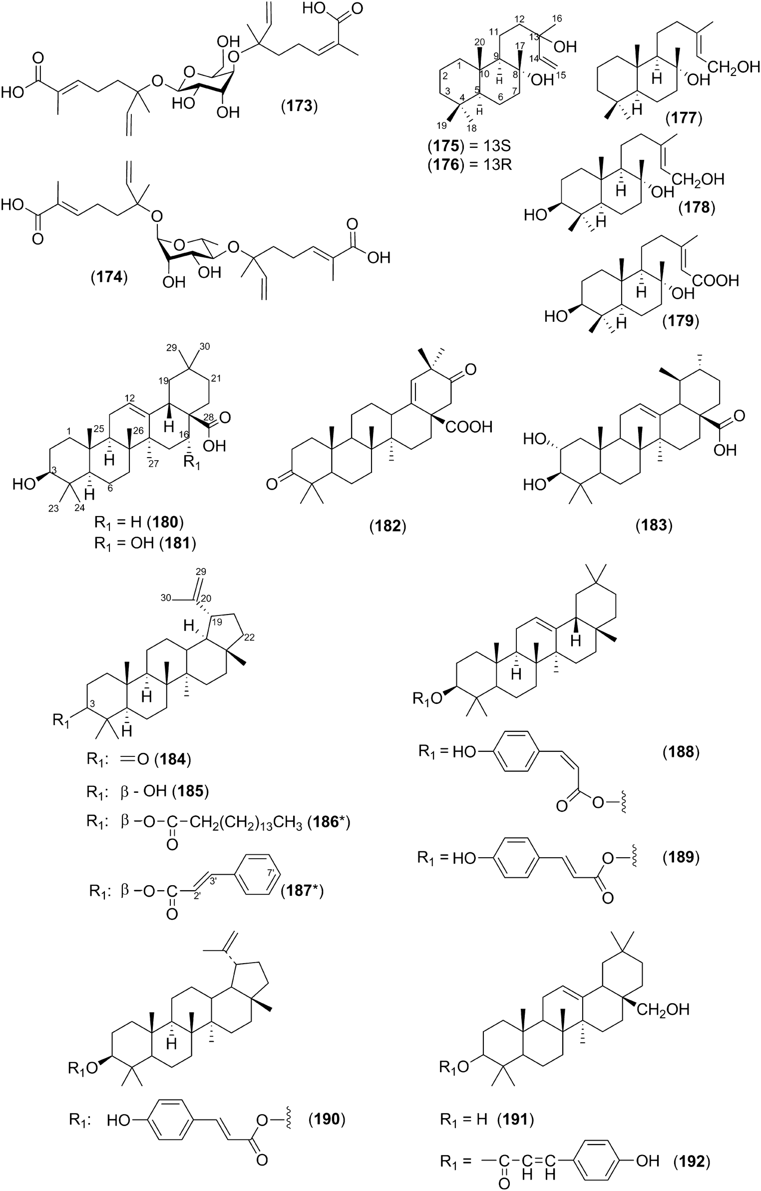 Phytochemistry And Bioactivity Of Acacia Sensu Stricto Fabaceae Tas Mumer Gaul 3 Open Image In New Window