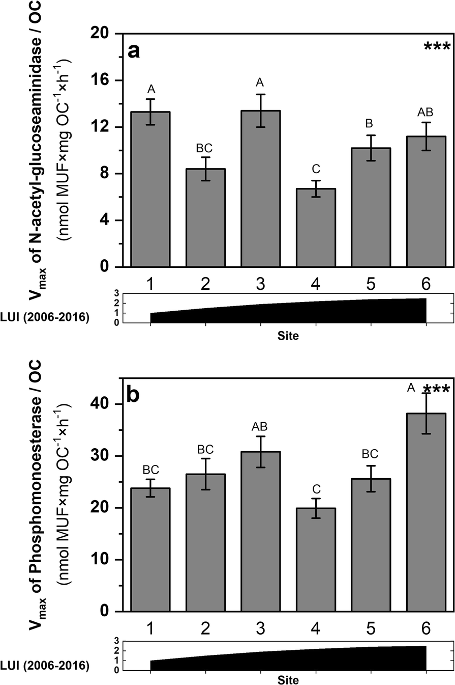 Land-use intensity shapes kinetics of extracellular enzymes