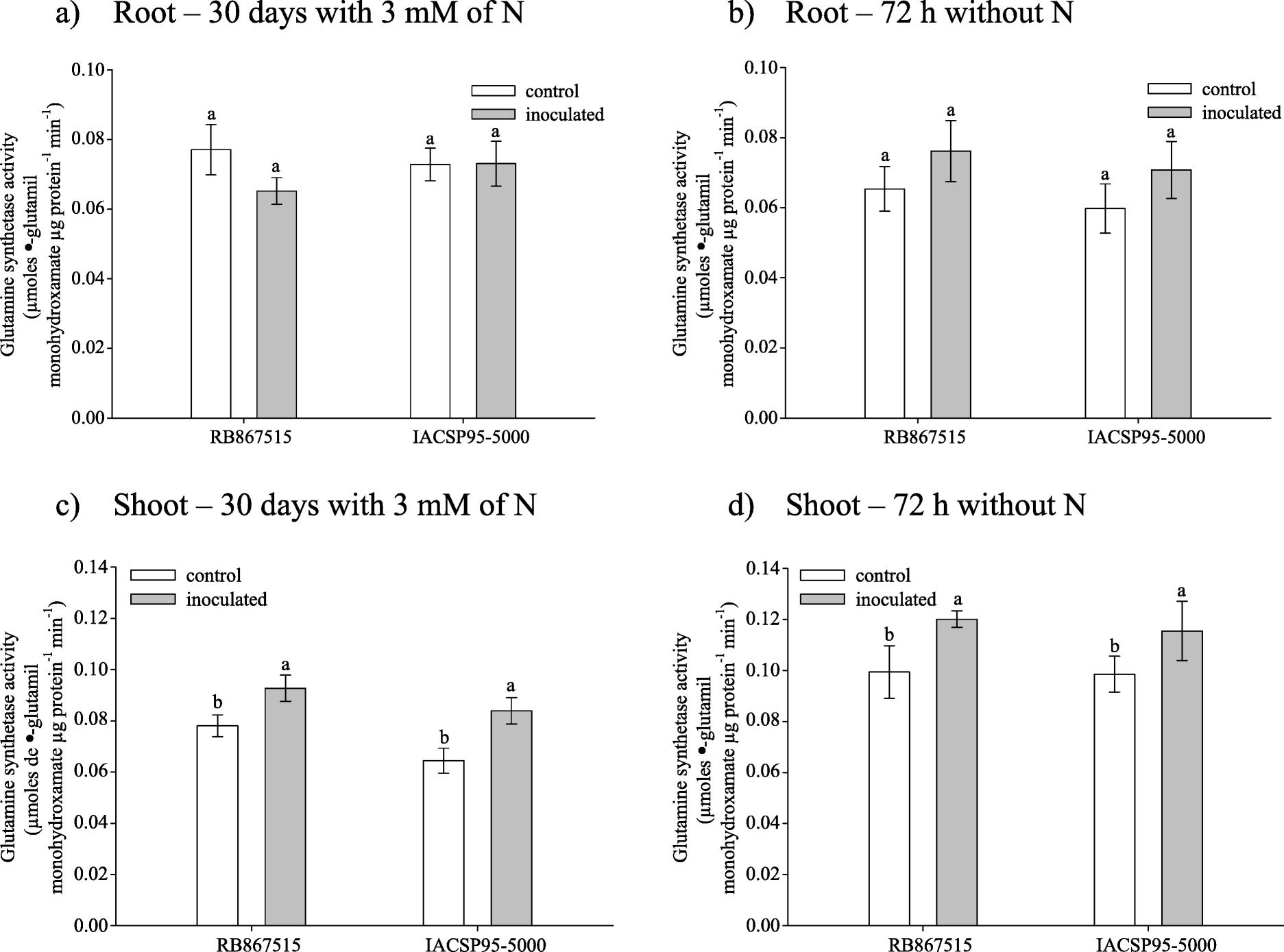 Inoculation with five diazotrophs alters nitrogen metabolism
