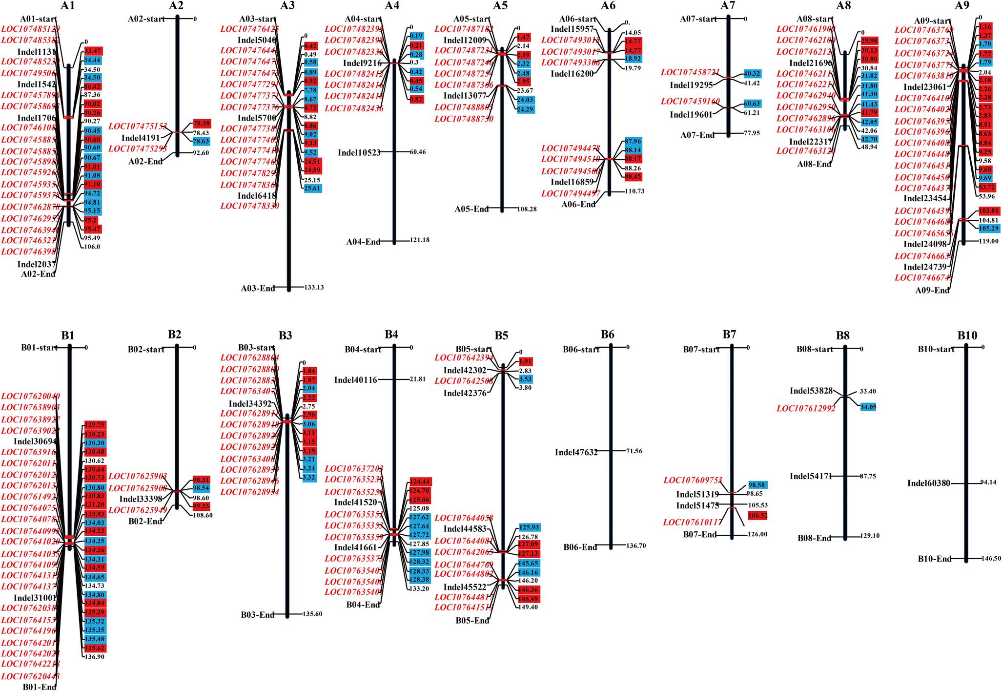 Genomic and Transcriptomic Analysis Identified Gene Clusters