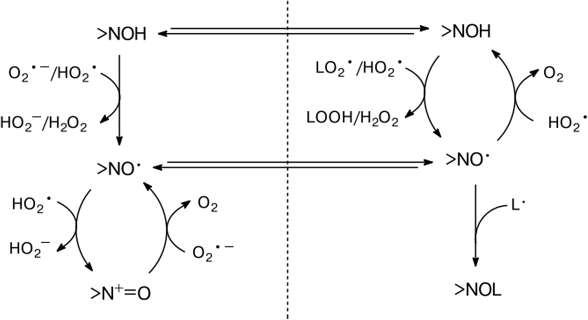 Quantum chemical evaluation of the role of [equation