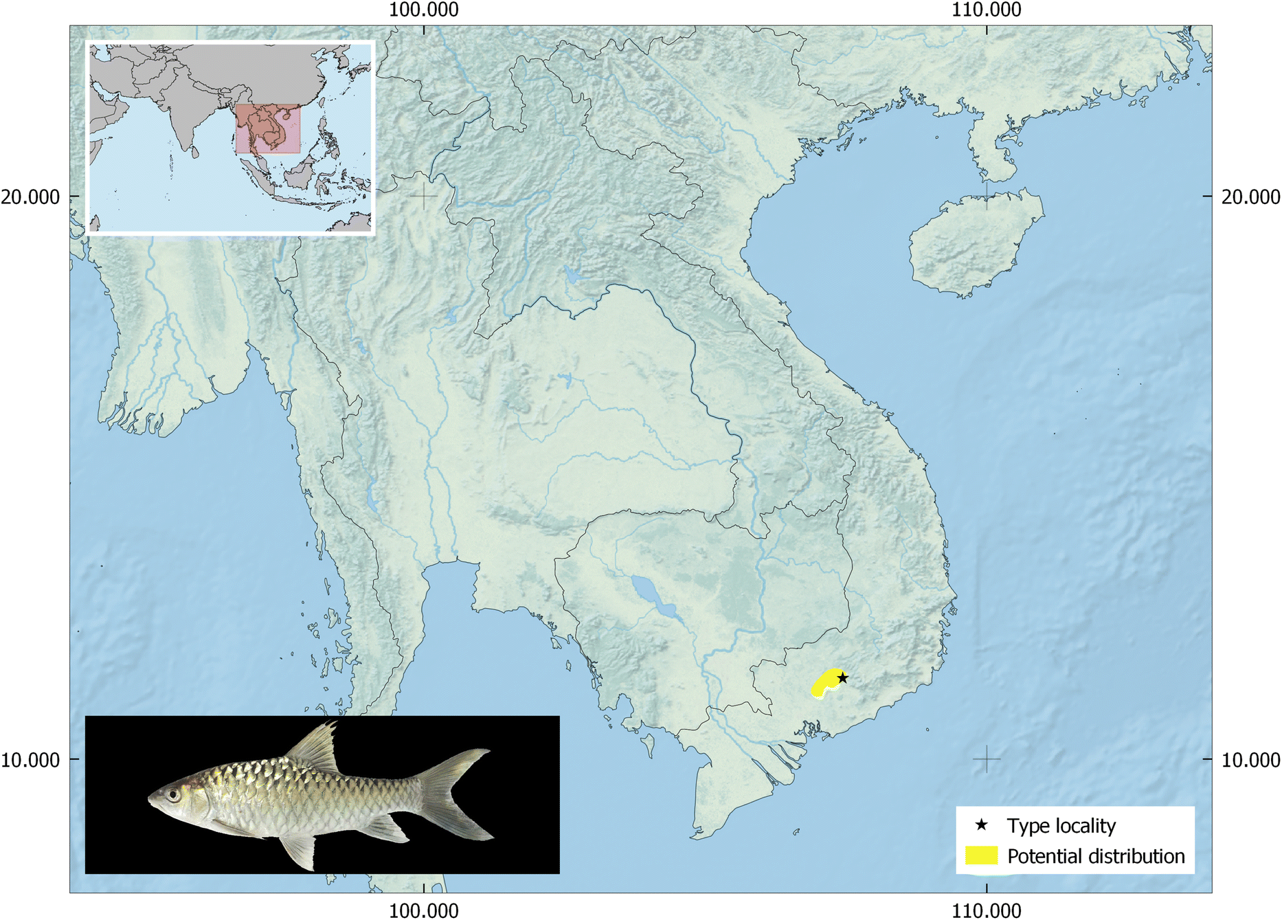 Mahseer ( Tor spp ) fishes of the world: status, challenges