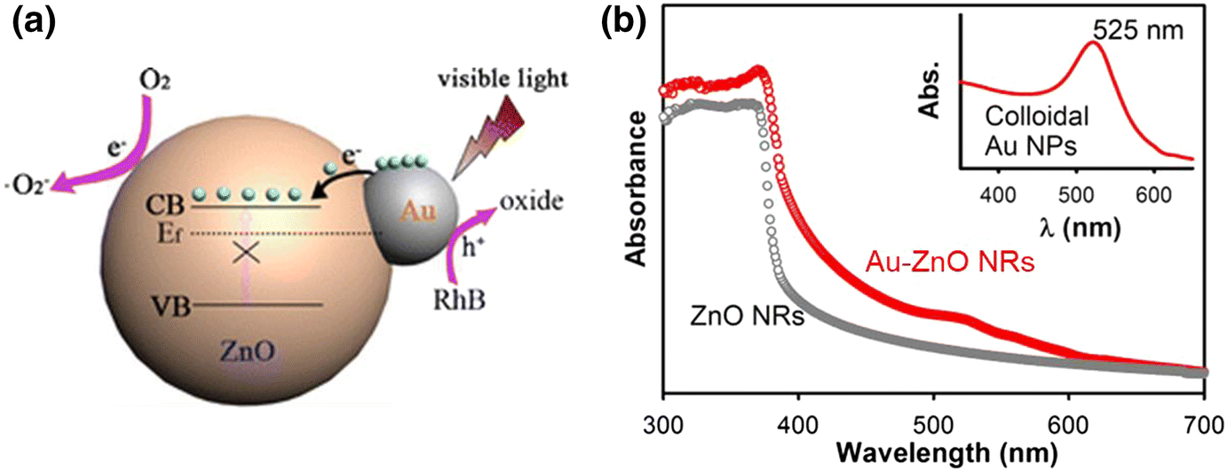 Design and tailoring of one-dimensional ZnO nanomaterials