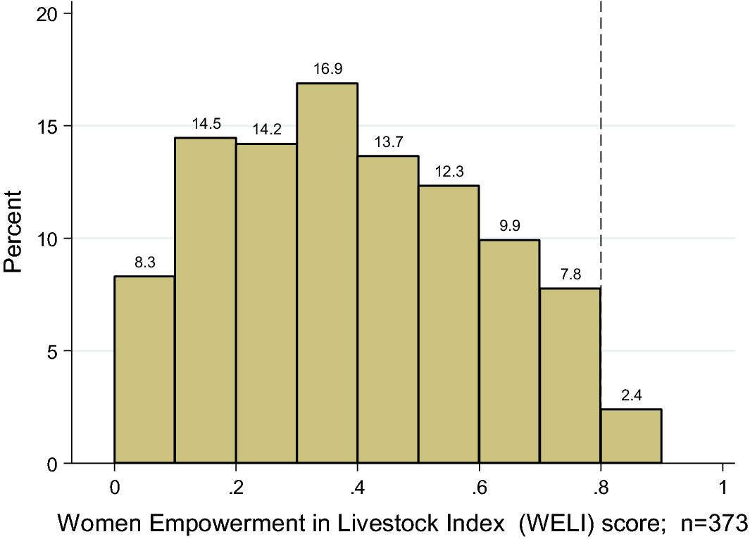 The Women's Empowerment in Livestock Index | SpringerLink