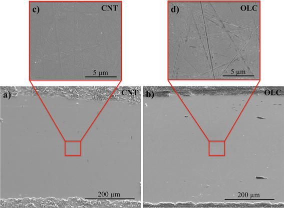 Influence of Surface Roughness on the Lubrication Effect of