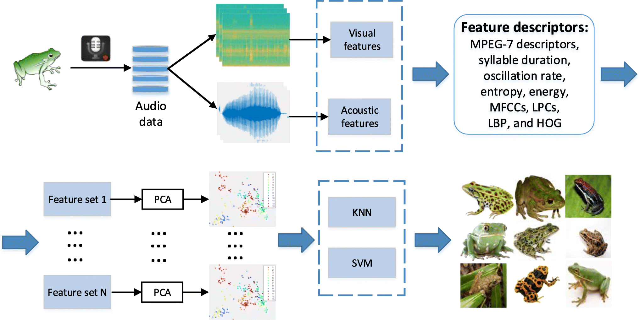 Investigation of Acoustic and Visual Features for Frog Call