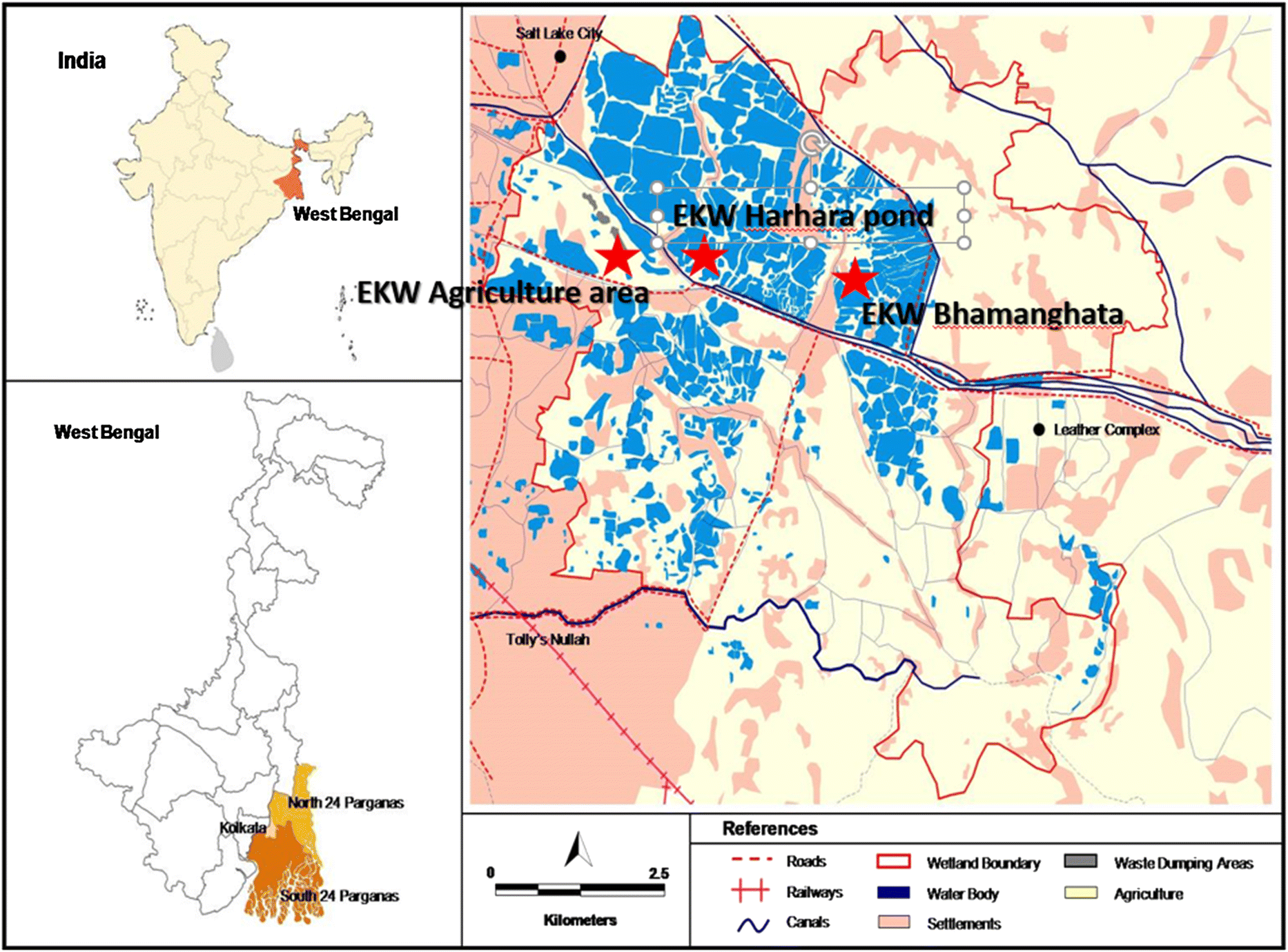 Ecosystem service assessment of selected wetlands of Kolkata