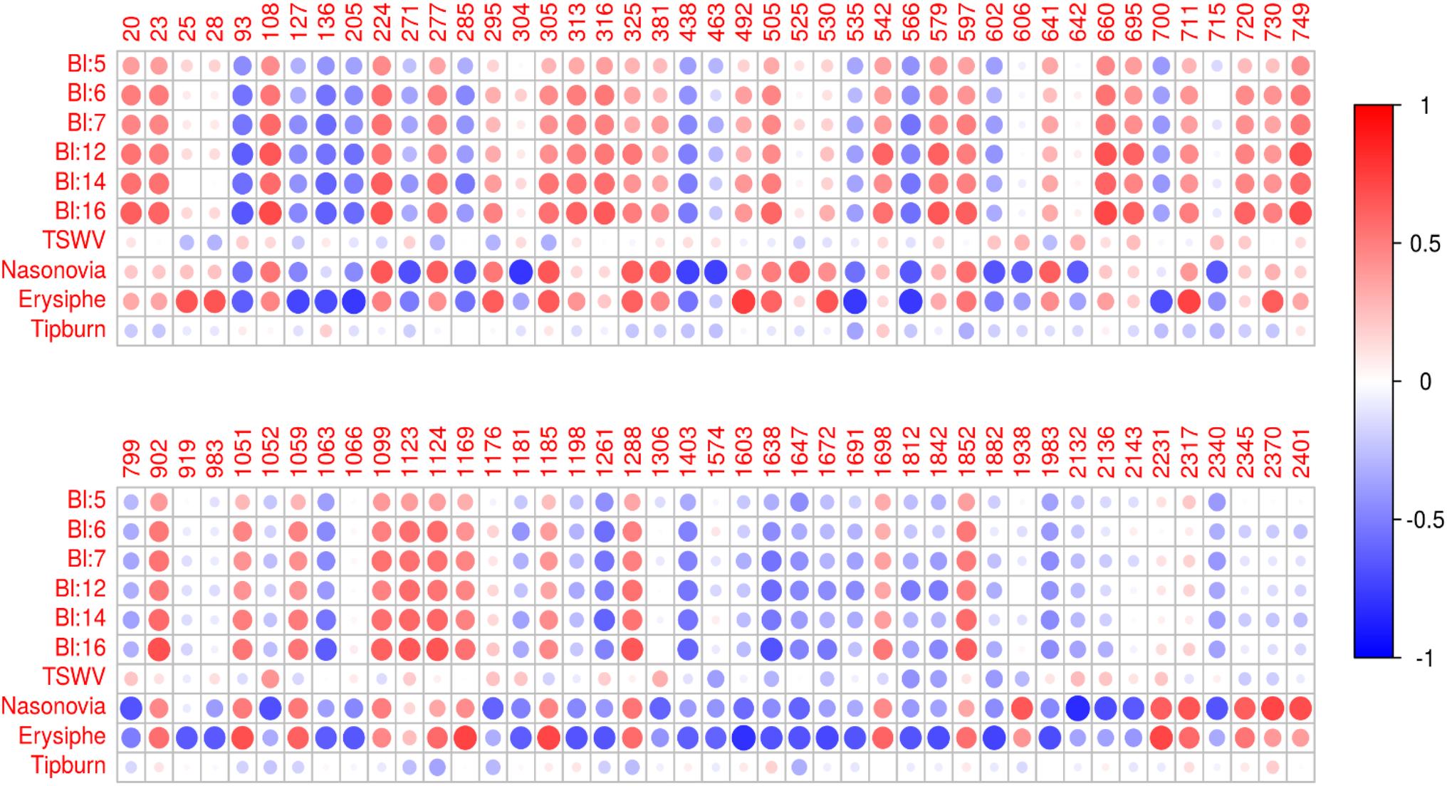 Metabolite variation in the lettuce gene pool: towards