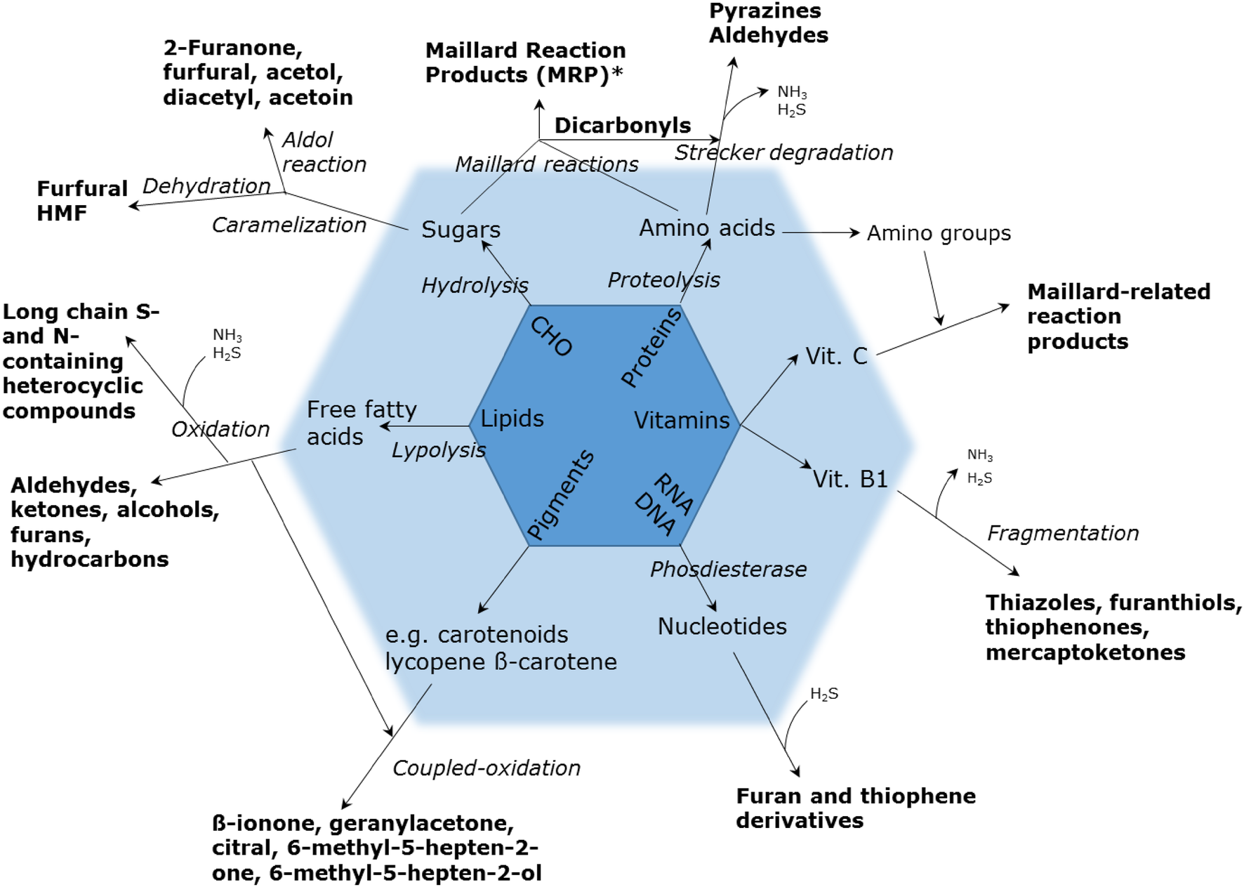 Mass spectrometry-based metabolomics of volatiles as a new
