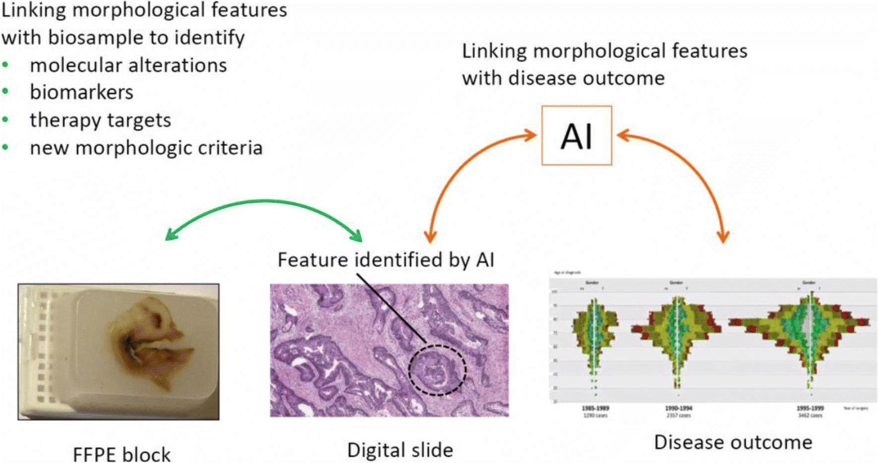 Advancing Biomarker Development Through Convergent