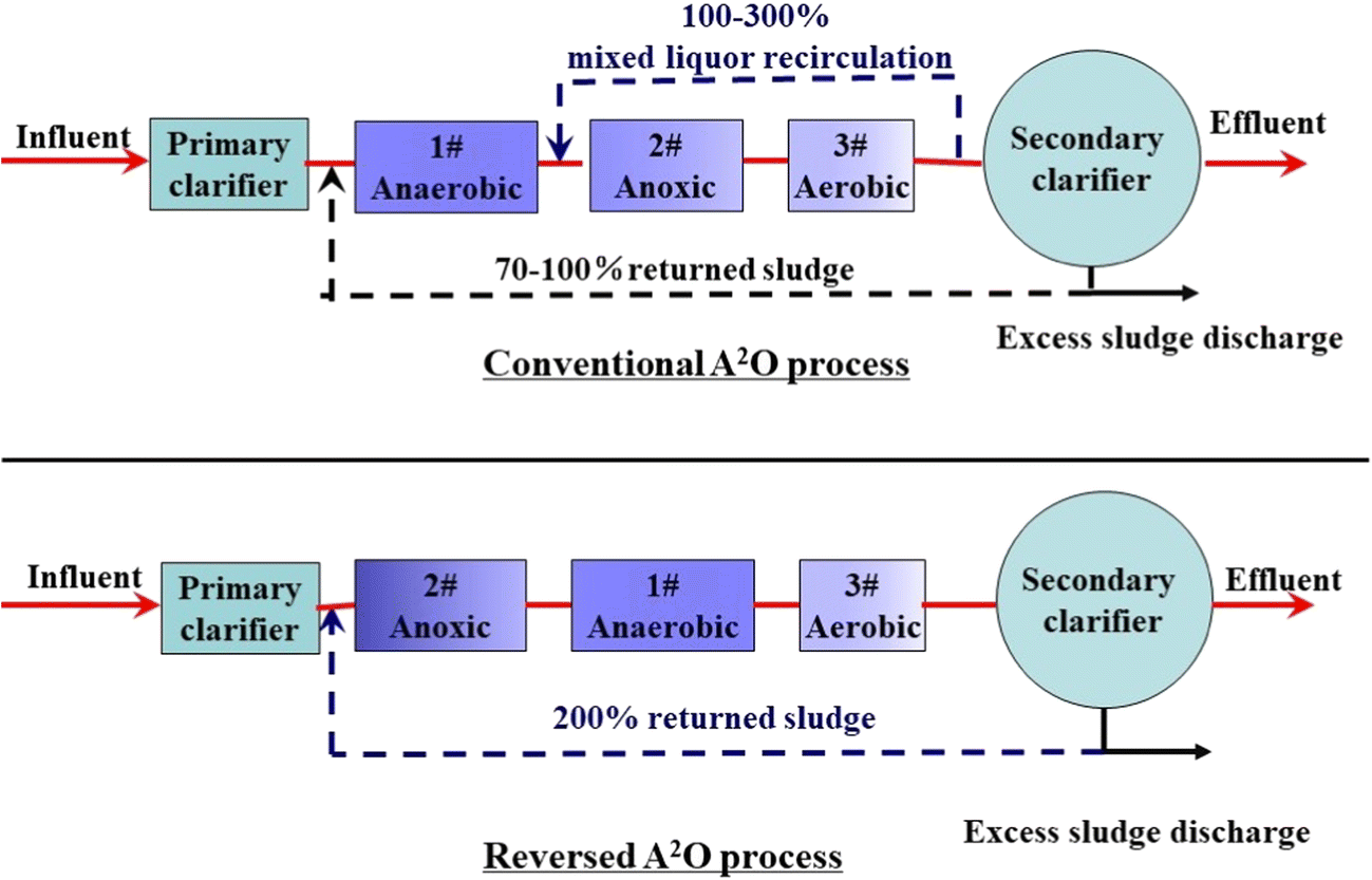 A Modeling Understanding On The Phosphorous Removal Performances Of Process Flow Diagram Wwtp Fig 1 Schematic