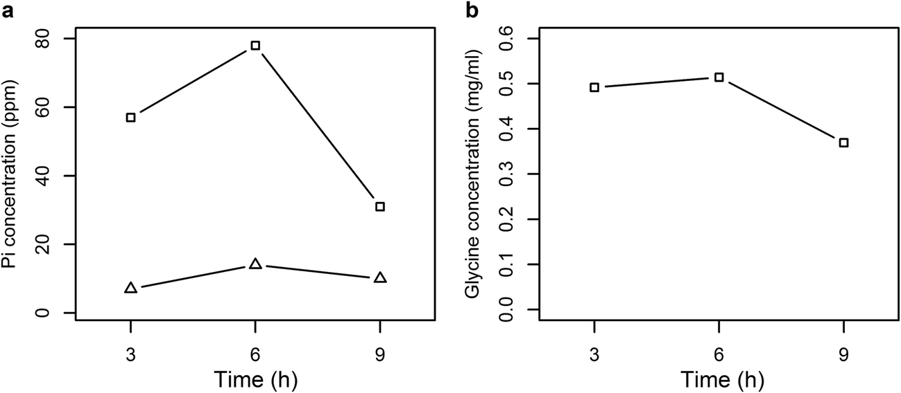 Molecular assessment of glyphosate-degradation pathway via