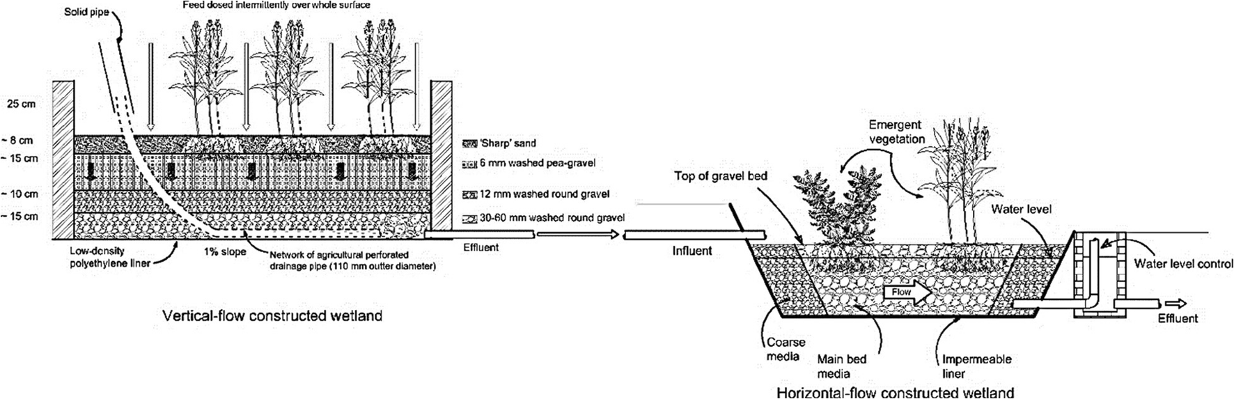 Wetlands for wastewater treatment and subsequent recycling
