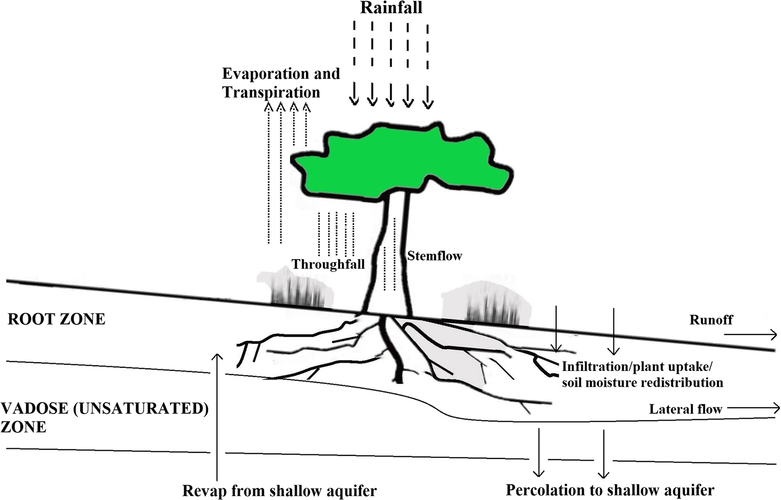 fig  1  schematic representation of various processes relevant to the soil  water