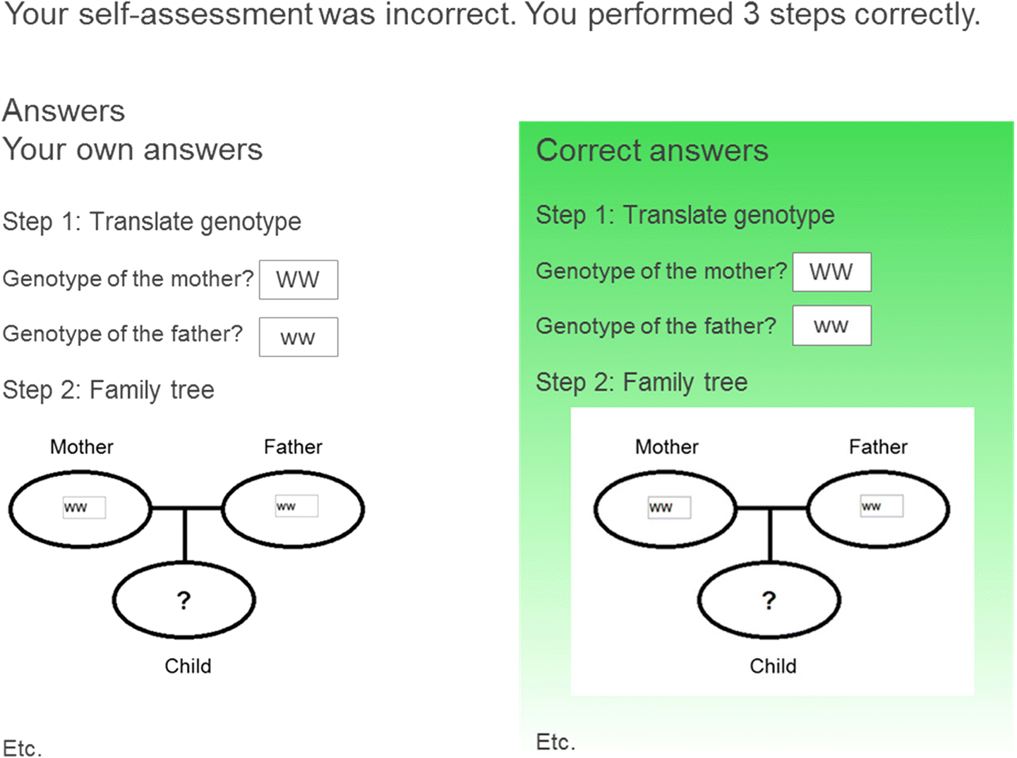 Effects of self-assessment feedback on self-assessment and