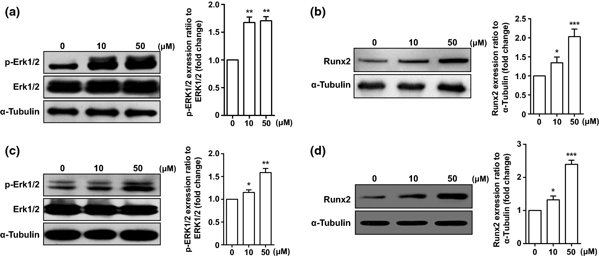 Aloin Promotes Osteogenesis Of Bone Marrow Derived Mesenchymal Stem Alkaline Battery Diagram Twinkle Toes Engineering Open Image In New Window