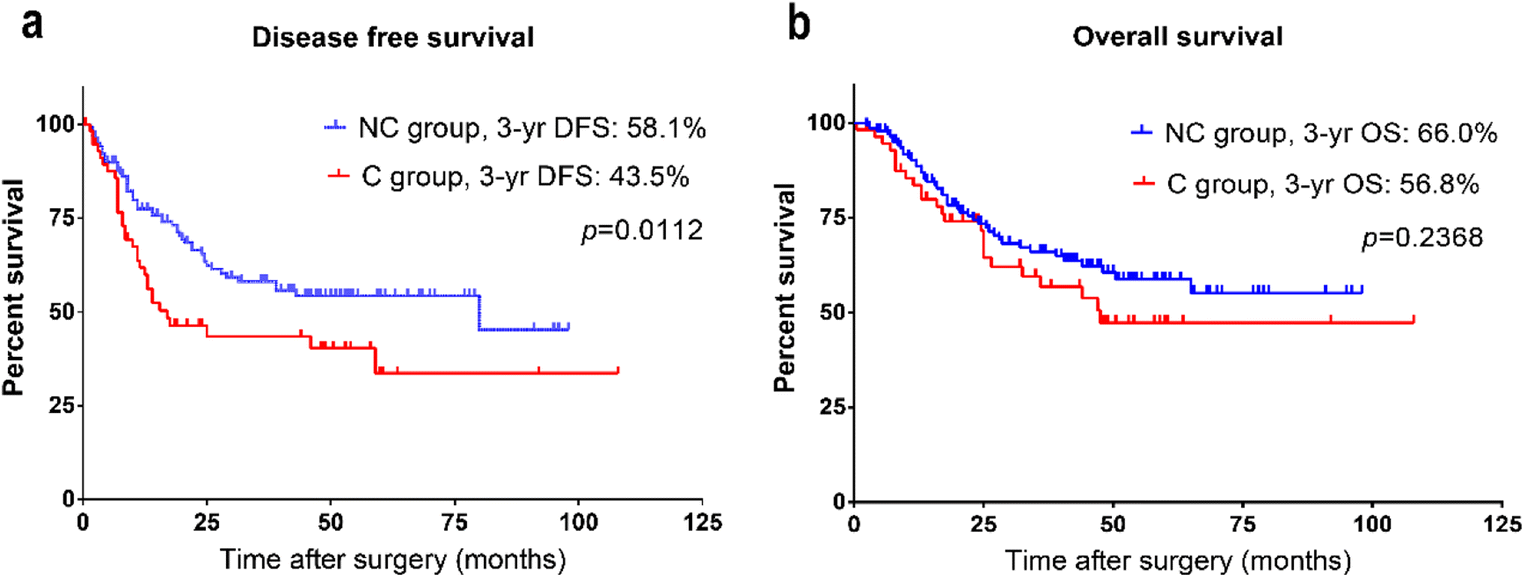 Effects of Neoadjuvant Chemotherapy Toxicity and Postoperative