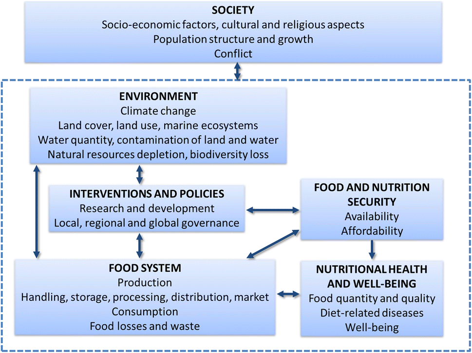 Sustainable food systems—a health perspective | SpringerLink