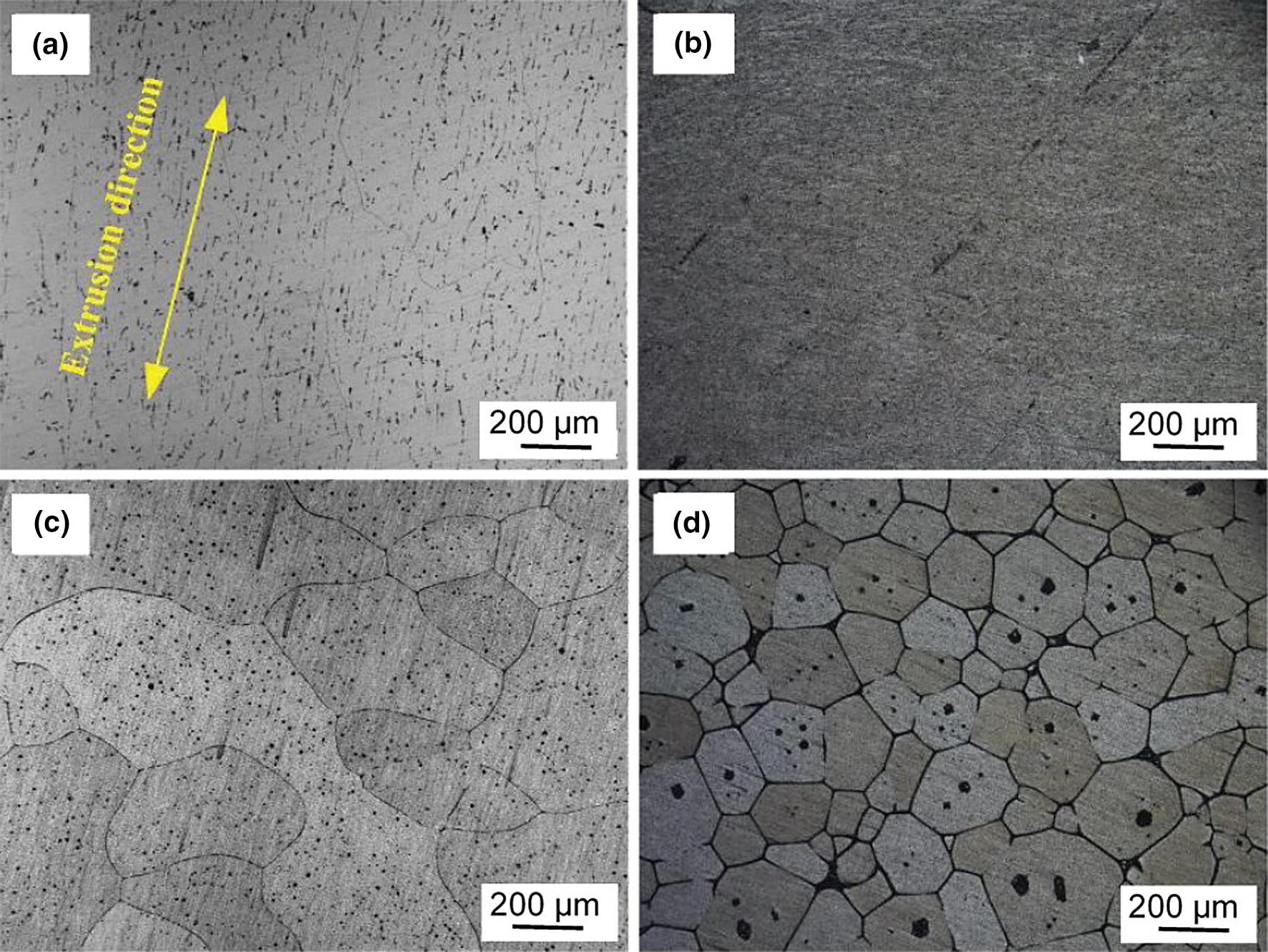 Thermomechanical Processing of Metal Feedstock for Semisolid Forming