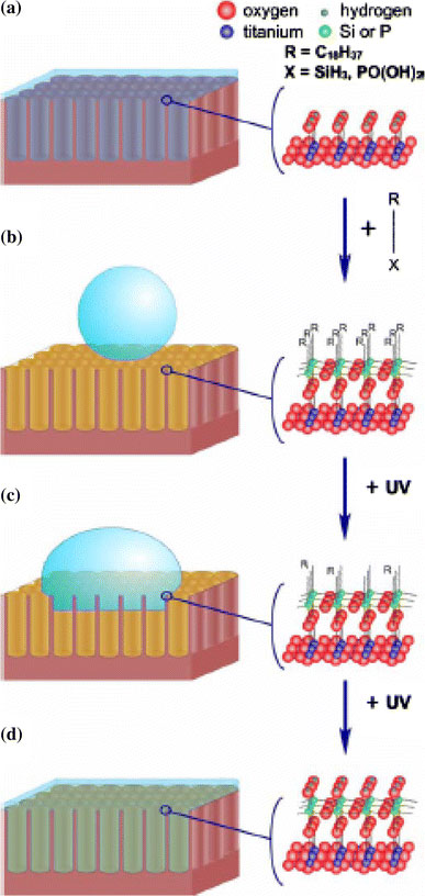 a research of surface wettability and superhydrophobic and superhydrophilic properties and their eff The ppy surface was switched from the superhydrophobic state (contact angle ¼ 159) to the superhydrophilic state (contact angle ¼ 0) in 3 s a wettability gradient was also created on a ppy surface using the layered system, causing a 3 ml droplet to travel.
