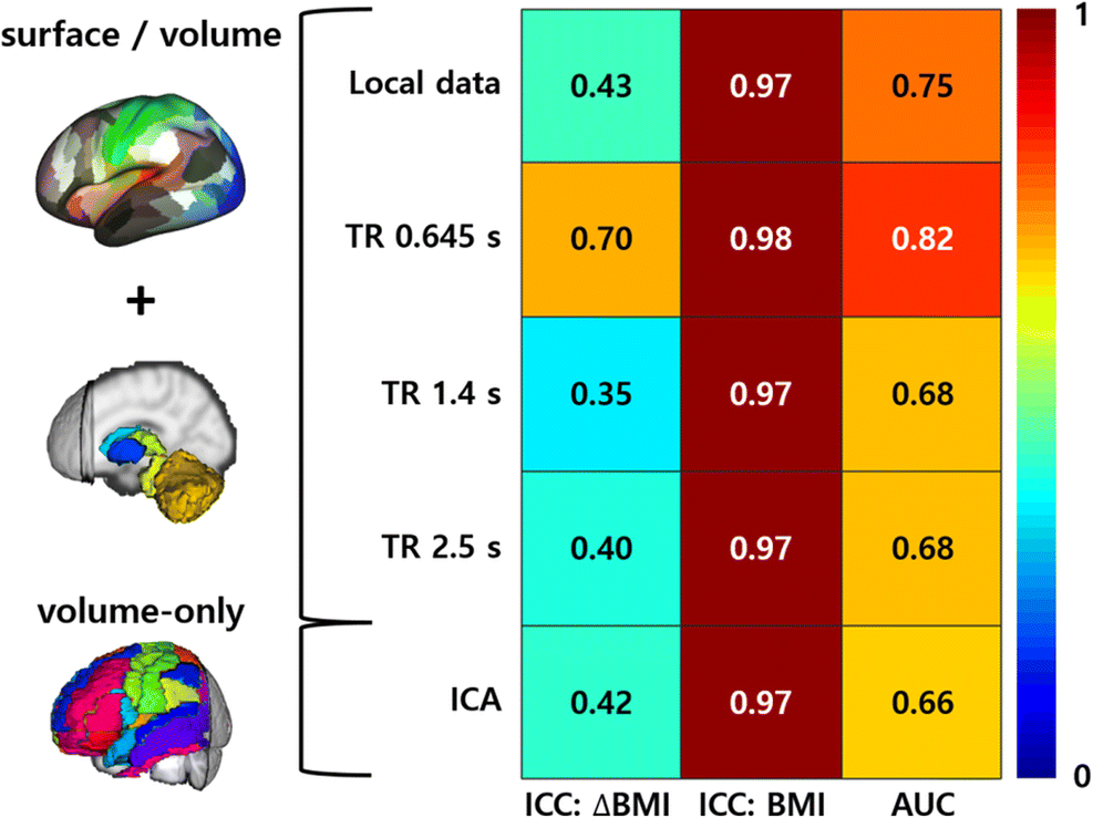 Accurate neuroimaging biomarkers to predict body mass index